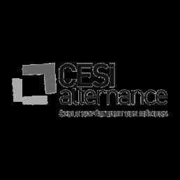 Live French client: CESI Alternance